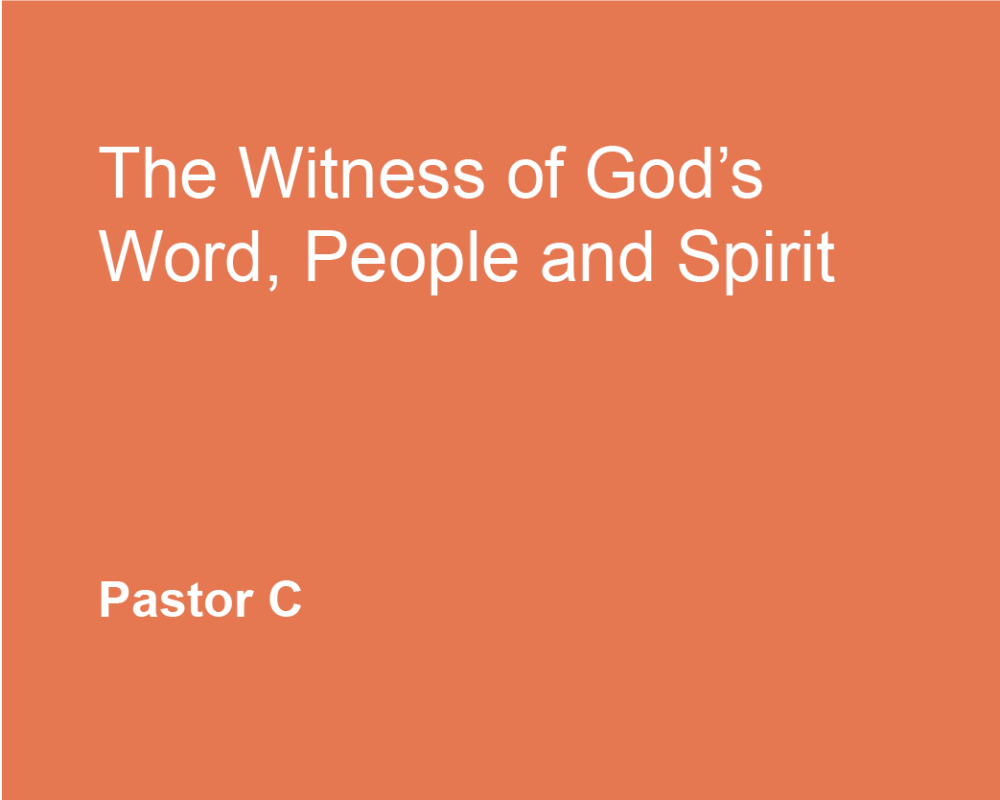 The Witness of God's Word, People, and Spirit